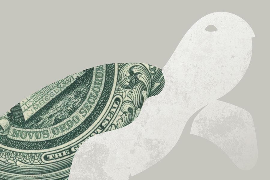 profit-turtle-detail3